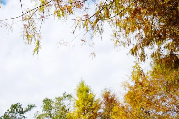南投景點【日月潭向山遊客中心】超大藝術品建築親子景點×湖光山色落羽松~絕美場景 - yukiblog.tw