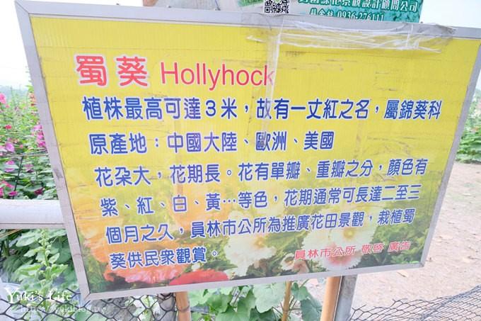 搶先看【2019蜀葵花迷宮】3/31開放~「琉璃仙境」順遊親子景點 - yukiblog.tw