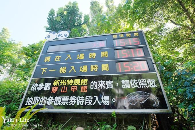 台北亲子景点【木栅动物园】热带雨林室内馆水豚君亮相!动物园室内游玩攻略 - yukiblog.tw