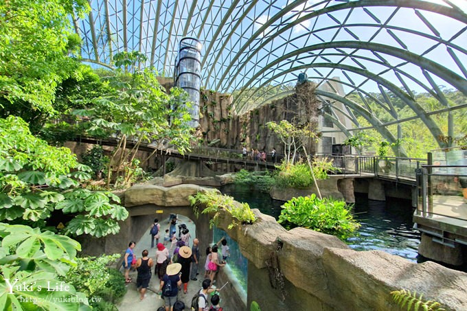 台北親子景點【木柵動物園】熱帶雨林室內館水豚君亮相!動物園室內遊玩攻略 - yukiblog.tw