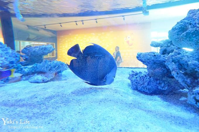 宜蘭親子景點【金車生技水產養殖研發中心】根本是水族館超好逛、鮮蝦現場吃、兒童遊戲區 - yukiblog.tw