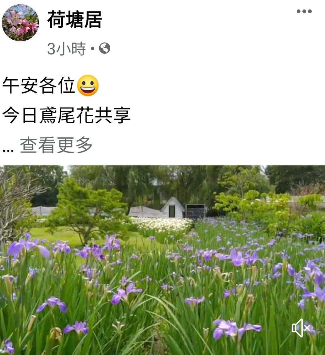 苗栗親子景點《荷塘居》田園鄉村風格×鳶尾花園區景觀餐廳 - yukiblog.tw