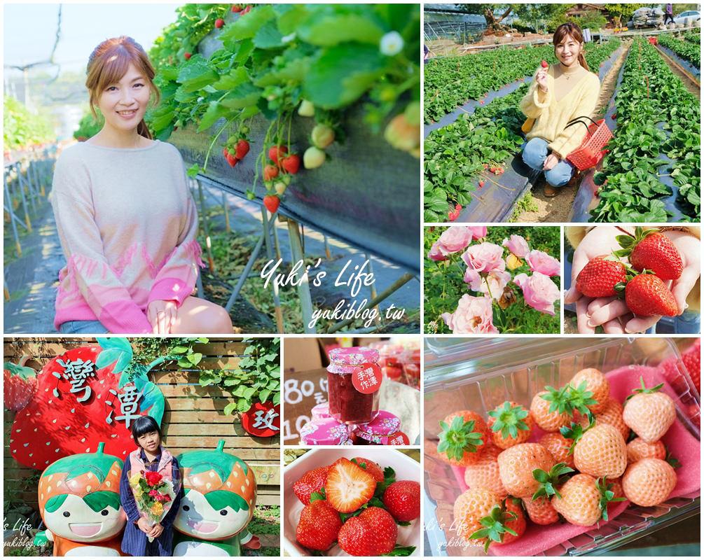 苗栗大湖採草莓推薦這兩家!喝牛奶的高架草莓×做草莓果醬DIY、香甜豐香草莓在這裡! - yukiblog.tw