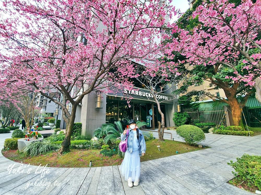 粉嫩櫻花美景喝咖啡「林口星巴克」限定粉紅浪漫~現在正美! - yukiblog.tw