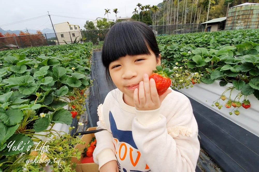 苗栗大湖採草莓推薦【莓果大高架豐香草莓】草莓比雞蛋還大~平日也能採! - yukiblog.tw