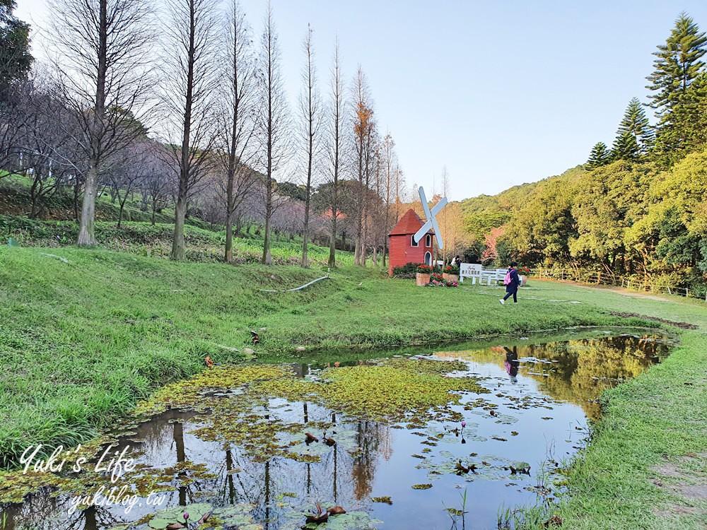 桃園親子景點《春天農場》異國風情浪漫森林~餵動物、落羽松、賞櫻花、烤肉、好吃麵包下午茶 - yukiblog.tw