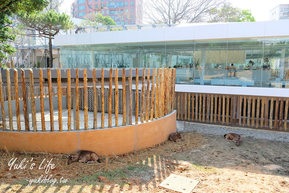 親子景點【新竹市立動物園】沒有籠子的動物園~全新回歸更好逛!(交通、停車場、門票) - yukiblog.tw