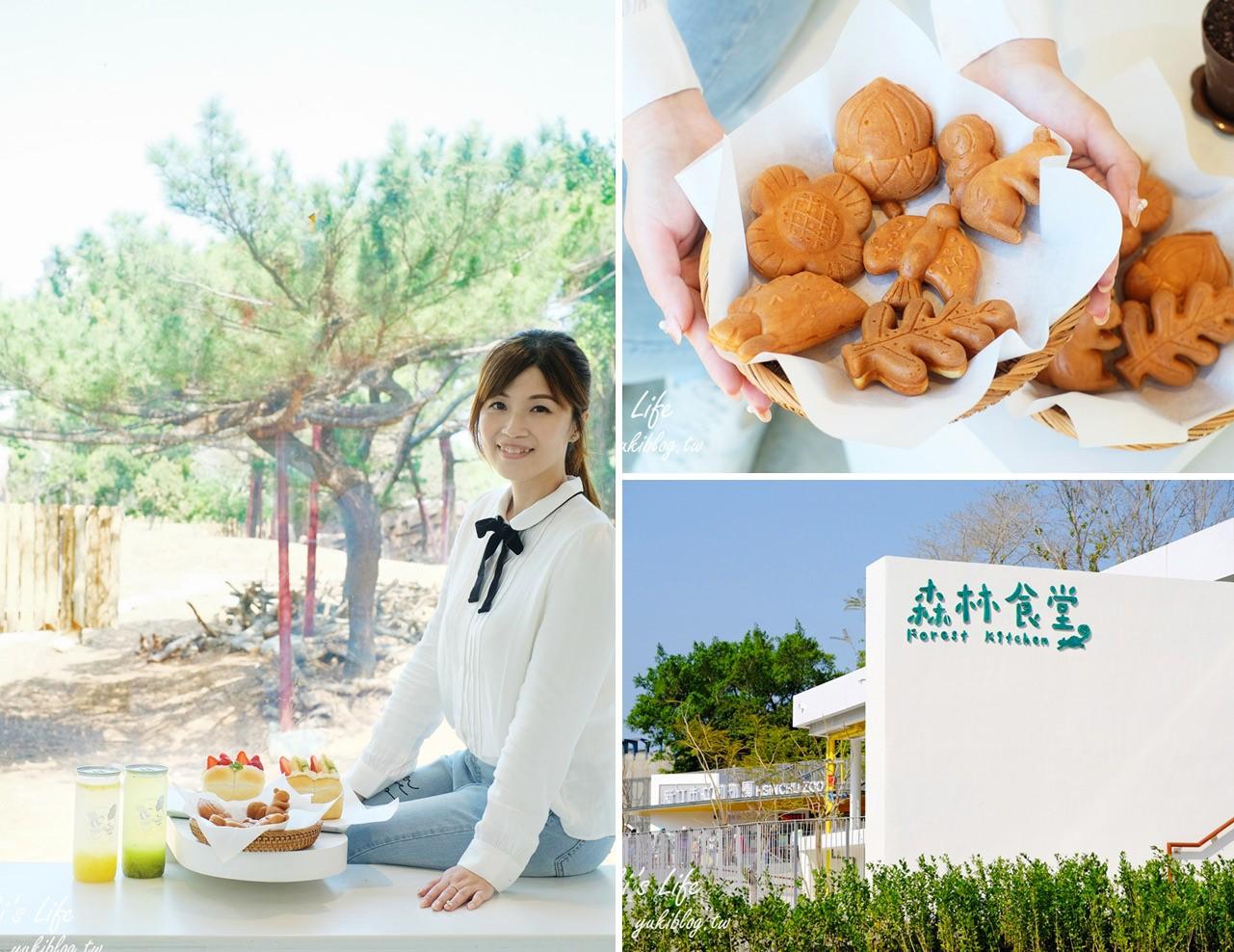 新竹美食【森林食堂】小動物松鼠雞蛋糕×吃美食看動物~親子友善餐廳也適合約會美拍 - yukiblog.tw