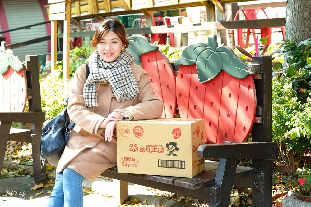 巨型草莓經典必訪『大湖酒莊』系列草莓限定美食×苗栗3路線懶人包玩透透 - yukiblog.tw