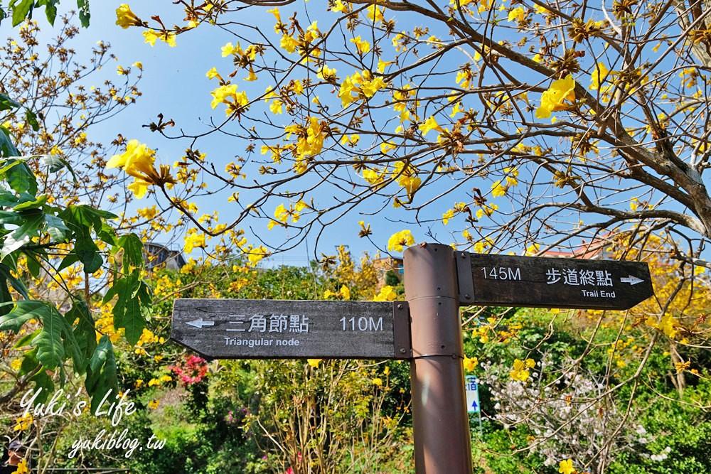 新竹景點【峨眉湖環湖步道】湖畔遠眺彌勒佛×黃花風鈴木拍照點在這裡! - yukiblog.tw