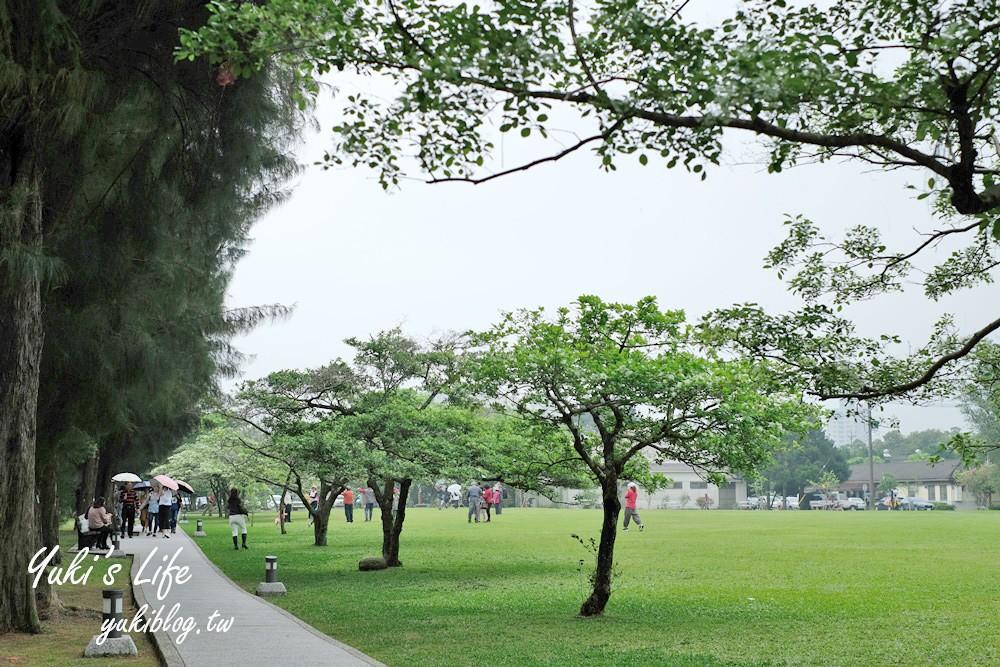 桃園親子景點【龍潭石管局大草原】親子野餐好去處×賞四月雪流蘇花在這裡 - yukiblog.tw