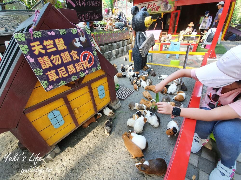 彰化南投餵草泥馬親子景點~小動物、景觀餐廳、夜景、U型溜滑梯~一日遊玩好玩滿! - yukiblog.tw