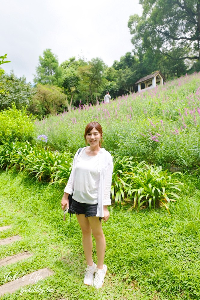 台中新社景點【薰衣草森林】森林旋轉木馬秘境~紫色浪漫花園~約會景觀餐廳 - yukiblog.tw