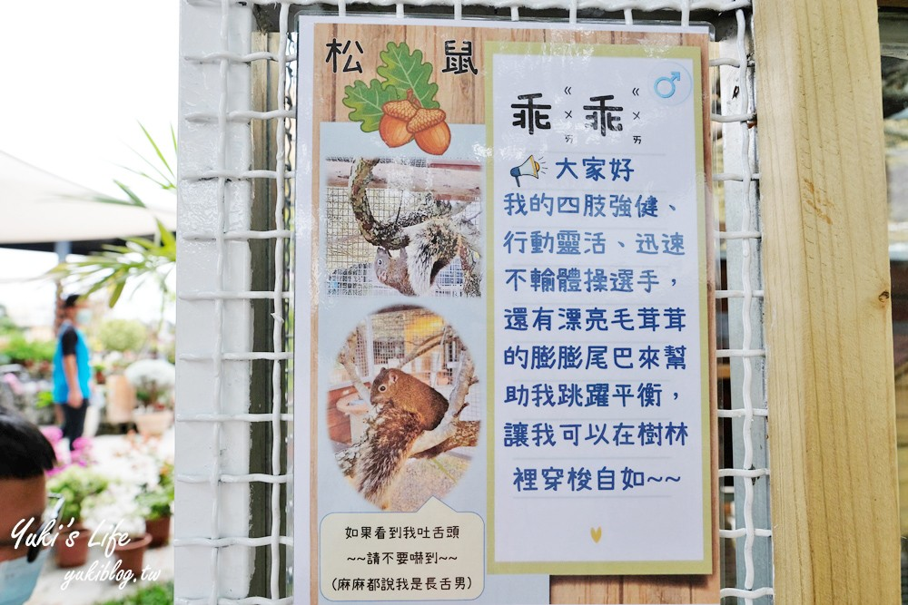 彰化芬園景點【埔茂花市】花園大沙坑溜滑梯~還有戲水池和小動物~悠閒下午茶親子遊 - yukiblog.tw