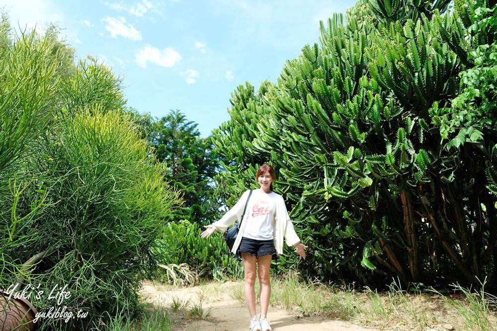 新竹新埔景点【福祥仙人掌与多肉植物园】多肉植物的环游世界之旅~免费逛 - yukiblog.tw
