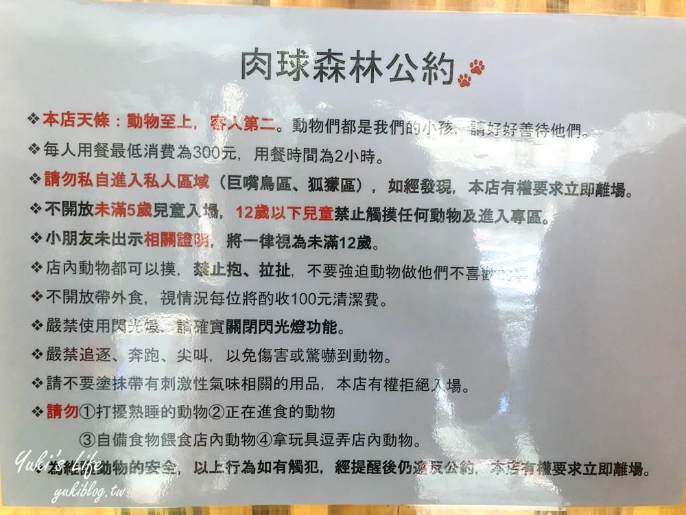 台北美食【肉球森林】 狐獴、大嘴鳥、貓咪咖啡廳(捷運東門站/捷運美食) - yukiblog.tw