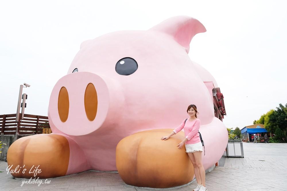 嘉義民雄景點【三隻小豬觀光農場】20多種動物遊樂園、繪本世界親子一日遊! - yukiblog.tw