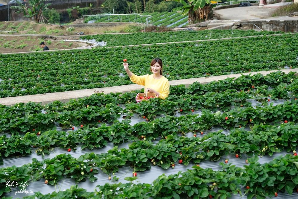 """大湖草莓园推荐""""莓李帽""""苗栗马拉邦山梯田式草莓园也太美!草莓餐疗愈你的心 - yukiblog.tw"""