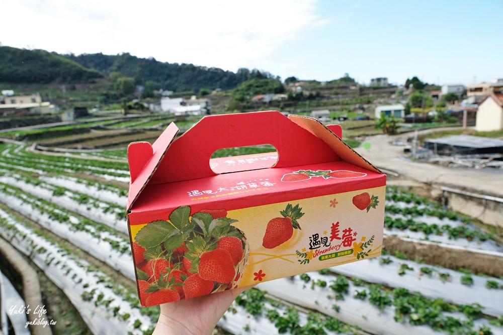 大湖草莓園推薦「莓李帽」苗栗馬拉邦山梯田式草莓園也太美!草莓餐療癒你的心 - yukiblog.tw