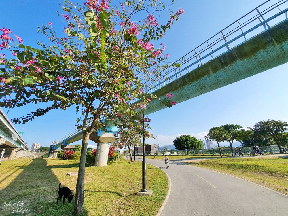 免費親子景點》浮洲藝術河濱公園vs羊咩咩的家~野餐大草皮,停車方便,騎腳踏車一日遊 - yukiblog.tw
