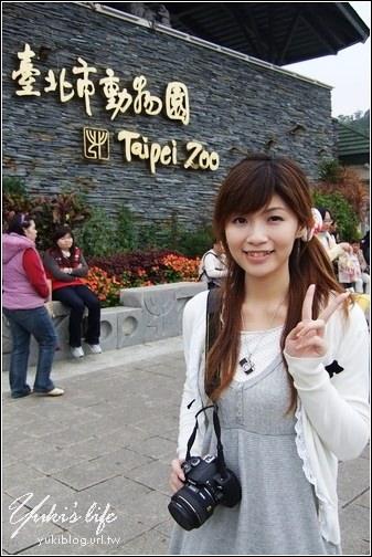 [玩-台北]木栅动物园(上) 趴趴走看猴子