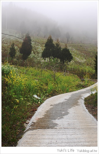 私の景點-北橫高義村