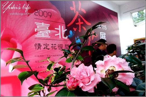 [台北-遊]*花卉試驗中心茶花展&賞櫻花 - yukiblog.tw