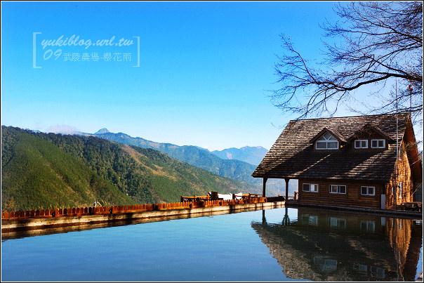 [09賞櫻]*武陵農場 III ~雪山登山口•粉色花瓣野餐饗宴