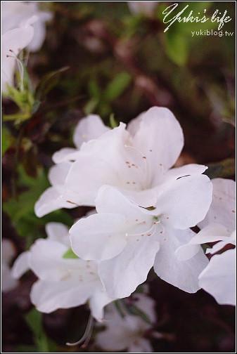[台中-遊]*東海大學~情人散步好地點 - yukiblog.tw