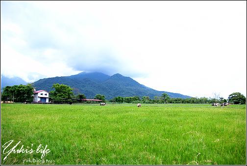 花蓮-瑞穗牧場