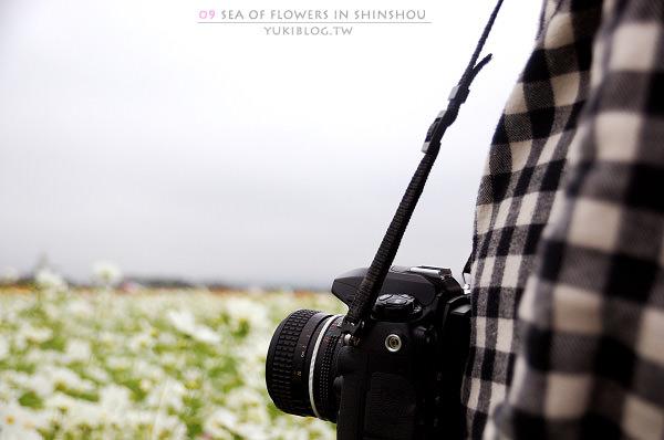 [台中-遊]*09新社花海節~如彩虹般的絢麗 (下) - yukiblog.tw