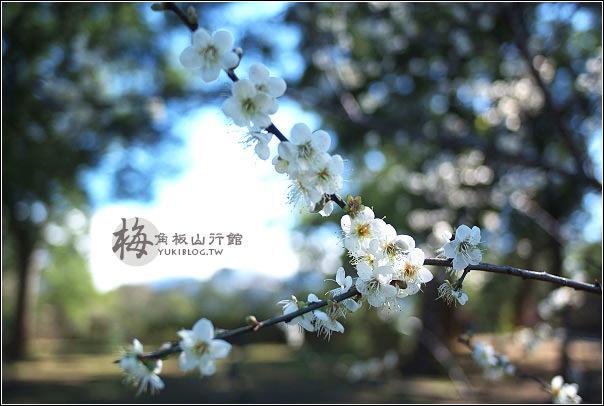 [桃園-遊]*復興鄉~角板山行館 梅花開了! - yukiblog.tw