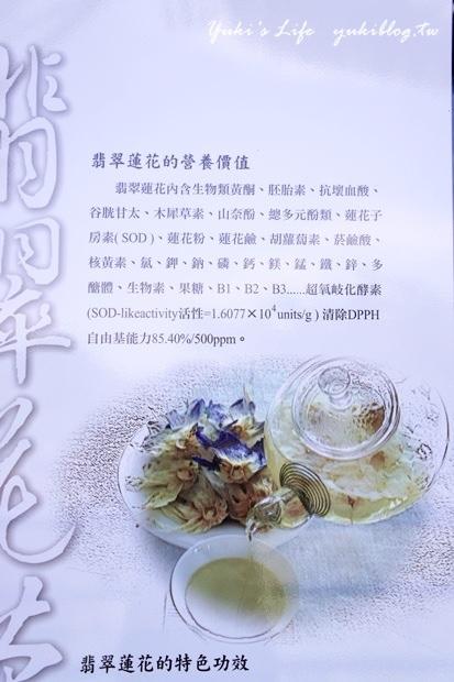 ┃頭城休閒旅遊達人來帶路┃I 淨水琉璃蓮花生態館‧一個充滿美麗蓮花與淡雅花香的地方‧養生蓮花餐 - yukiblog.tw