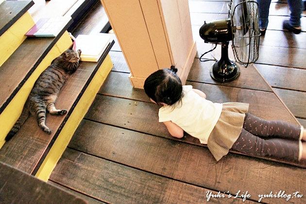 台中胡同貓咪咖啡