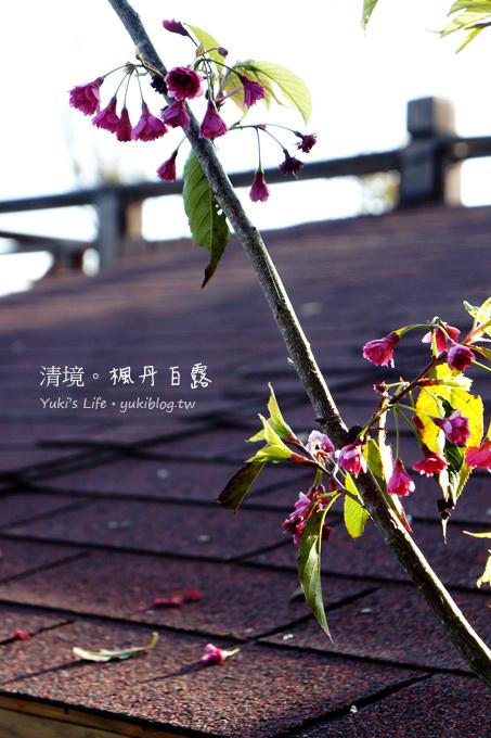 [南投埔里]*清境楓丹白露民宿‧接近雲海享受白露.日落.星辰 - yukiblog.tw