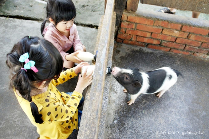 宜蘭冬山親子景點【宜農牧場】超高CP值.餵小豬、餵小羊