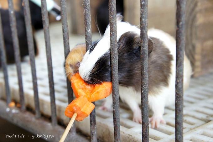 宜蘭冬山親子景點【宜農牧場】超高CP值.餵小豬、餵小羊 - yukiblog.tw