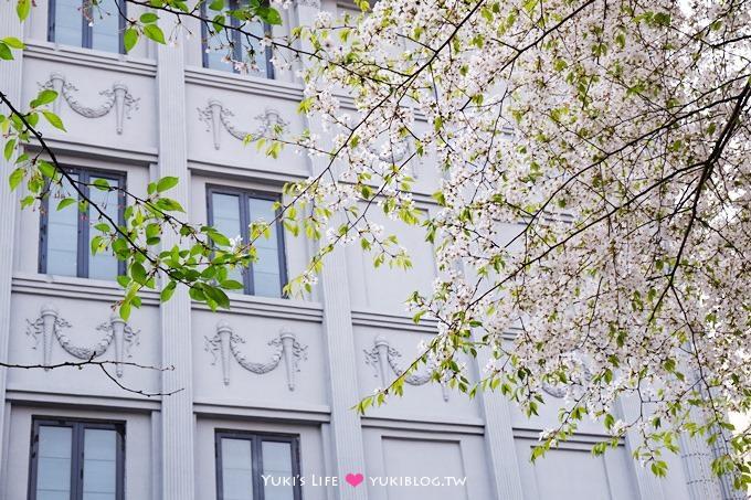 韓國首爾親子自由行【賞櫻花】櫻花季時路邊隨處有美景 @忠武路站 - yukiblog.tw