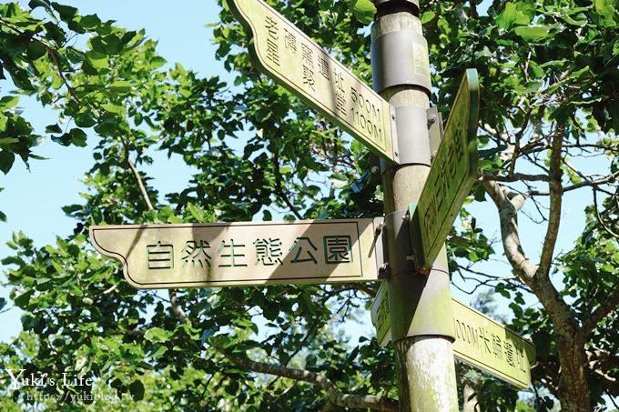桃園景點【三坑自然生態公園】玩水大草坪×野餐親子景點! - yukiblog.tw