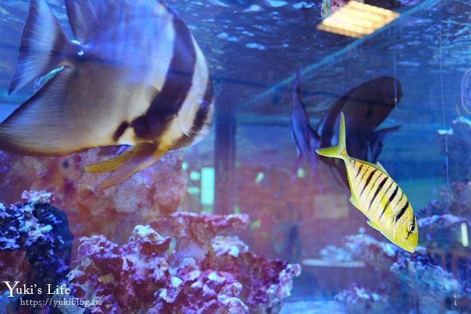 免費!宜蘭景點【金車生技水產養殖研發中心】媲美水族館超好逛!礁溪室內親子景點、鮮蝦現場吃!兒童遊戲區❤ - yukiblog.tw