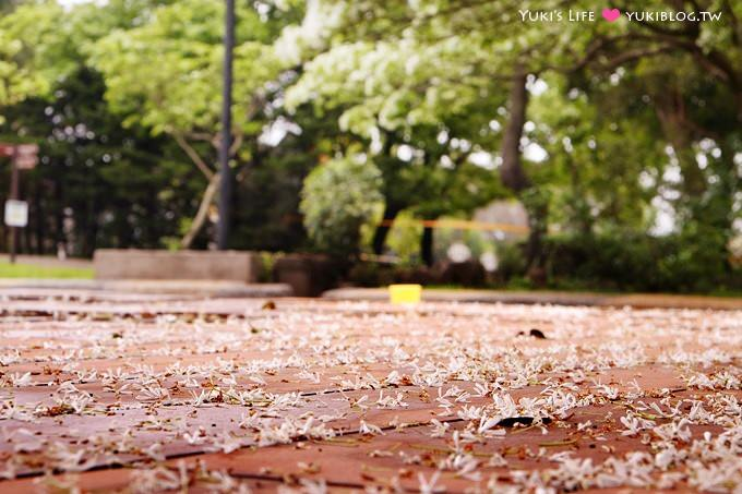 桃園楊梅親子遊【味全埔心牧場】初夏●流蘇雨下的戲水玩水區&小豬賽跑gogo! - yukiblog.tw