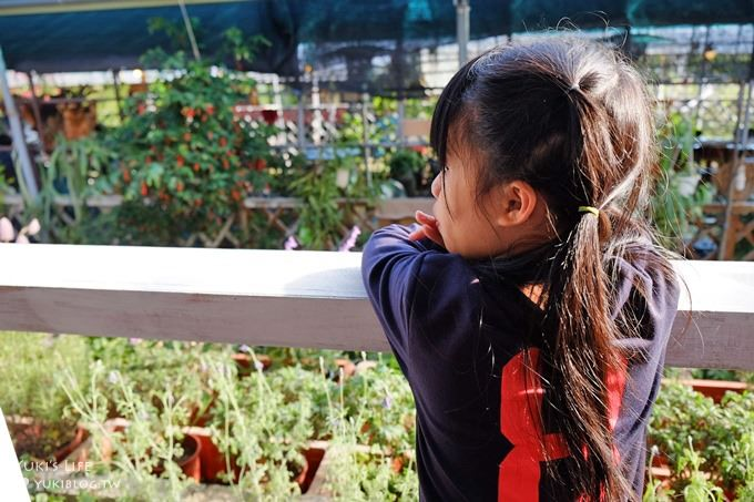 台北內湖採草莓親子景點【莓圃觀光休閒農園】草莓披薩下午茶好甜蜜×可做糖霜餅乾DIY - yukiblog.tw