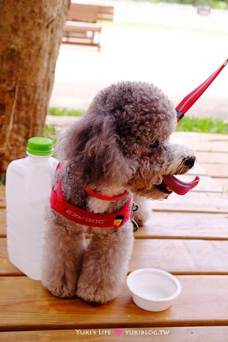 桃園龍潭【林可可家的牧場】親子寵物餐廳~玻璃屋沙坑、大草皮、兒童遊戲室 - yukiblog.tw