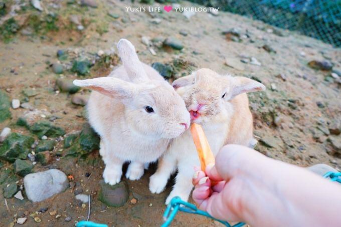 八里【桃樂絲森林(穀興農場)】親子景觀餐廳、大草皮、沙坑、餵小動物、風味餐 - yukiblog.tw