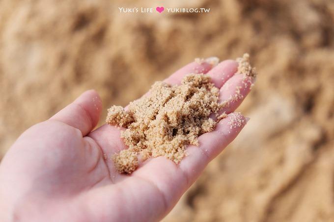 雲林景點【千巧谷牛樂園牧場】免門票大沙坑觀光牧場×手作窯烤PIZZA、鮮奶茶、麵包蛋糕 - yukiblog.tw