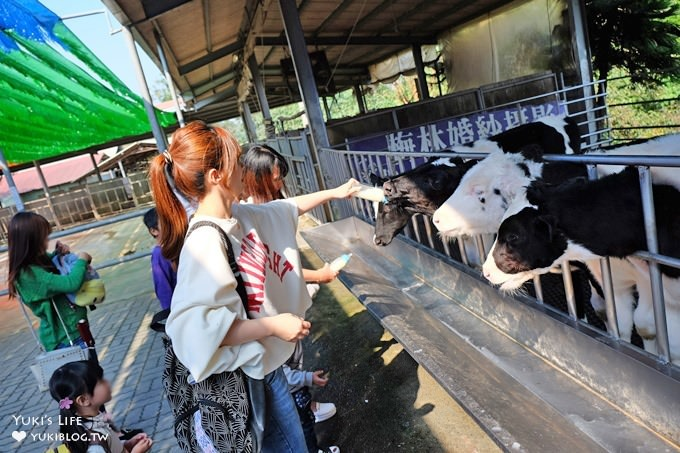 嘉義親子景點【獨角仙休閒農場】高CP值親子好去處、餵動物、玩沙、下午茶 - yukiblog.tw