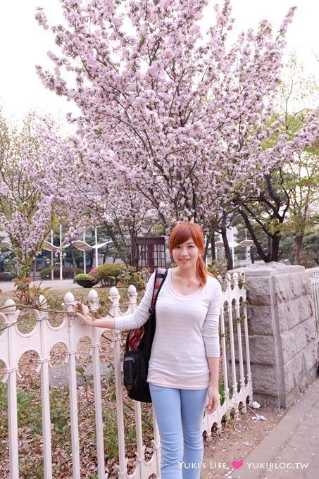 韓國首爾自由行【汝矣島賞櫻花野餐】正巧碰上櫻花季尾巴 - yukiblog.tw