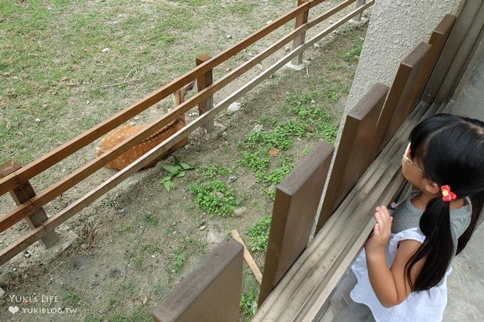 彰化親子免費景點【鹿港生態公園】梅花鹿新家×小鹿餵食體驗(假日整點開放時間表) - yukiblog.tw