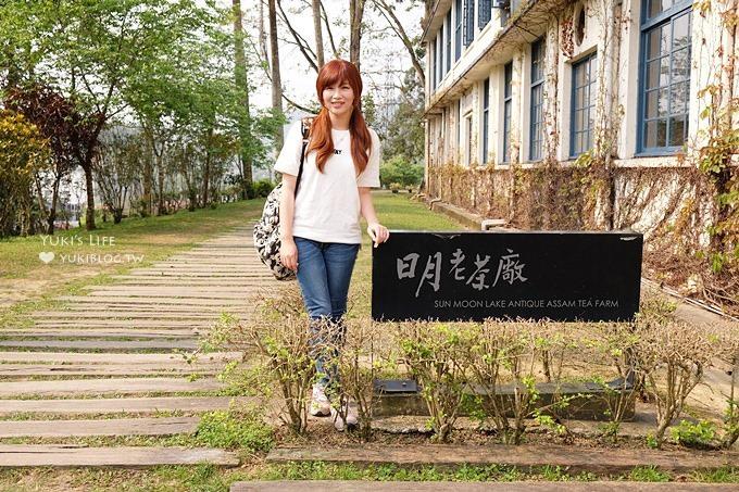 南投魚池拍照景點【日月老茶廠】上廁所要脫鞋的生機盎然老茶廠×也是一個拍照好去處