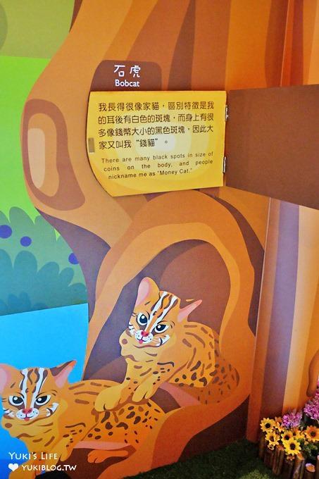 南投集集免費親子景點【jijibanana集元果觀光工廠】松鼠可愛故事館×沙坑球池溜滑梯放電好去處   Yukis Life by yukiblog.tw